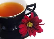 Cup des schwarzen Tees und rote Blume Lizenzfreies Stockfoto