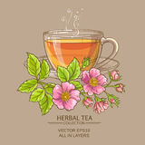 Cup of dog rose tea Royalty Free Stock Image