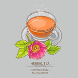 Cup of dog rose tea Stock Photography