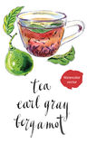 Cup of Earl Grey tea with bergamot, Stock Image