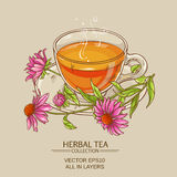 Cup of echinacea tea Stock Images
