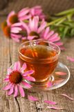 Cup of echinacea tea on old wooden table.  stock photo