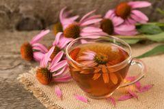 Cup of echinacea tea on old wooden table.  stock photos