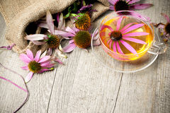 Cup of echinacea  tea on wooden table Royalty Free Stock Photo