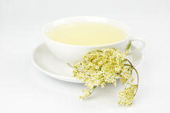 Cup of elder blossom tea Royalty Free Stock Photography
