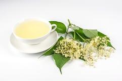 Cup with elder tea Stock Image