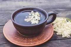 A cup of Elderflower tea with fresh flowers. Healthy Medicine Elderberry Flower Tea royalty free stock photography