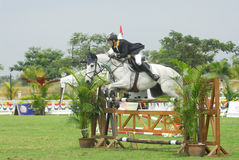 Cup Equestrian Show Jumping première Image stock