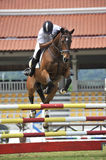 Cup Equestrian Show Jumping prima immagine stock