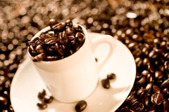 Cup of Espresso. Espresso cup full of gourmet coffee beans Royalty Free Stock Images
