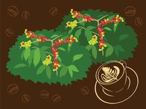 A cup of Espresso from Coffee Bean and Plant Vector Illustration. For many purpose such as print on canvas, stationery, cafe wallpaper, menu book, etc. The file stock illustration