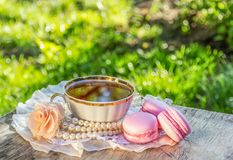 Cup of evening tea in the summer garden. Delicate almond macaroons and cup of tea in sunny garden royalty free stock photography