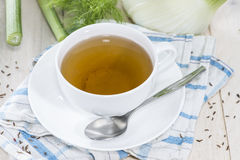 Cup of Fennel Tea Stock Images
