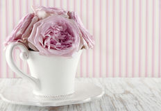 Cup filled with a bouquet of pink roses Stock Image