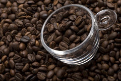 Cup filled with coffee beans Stock Image