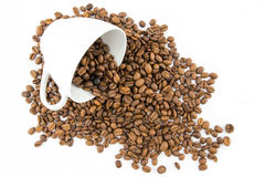 Cup filled with coffee beans Stock Photography