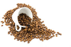 Cup filled with coffee beans Stock Photo