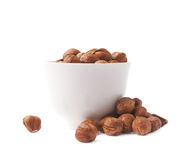 Cup filled with the hazelnuts isolated Royalty Free Stock Photo