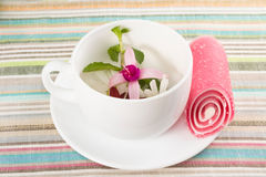 Cup with flower allsorts Stock Images