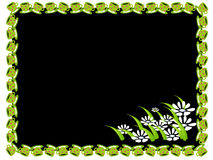 Cup and flower frame. Black  illustration of a frame with green cup , flowers below, background in black Royalty Free Stock Photos