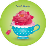 Cup with a flower Pretty rose Stock Photo
