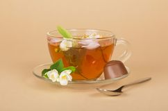 Cup of flower tea and the chocolate Royalty Free Stock Photo