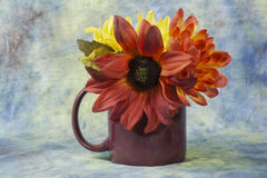 Cup of flowers,. Assorted flowers in a coffee cup Royalty Free Stock Images