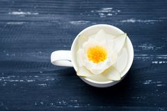 Cup of flowers on a wooden background Royalty Free Stock Photos