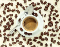 Cup of foamy coffee surrounded by coffee beans Stock Image