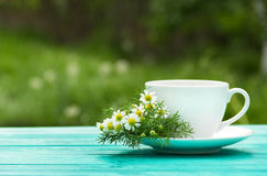 A cup of fragrant chamomile tea in the garden. A useful hot drink with chamomile flowers. Natural medicine. Stock Photo