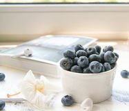 A Cup of fresh blueberry on a Sunny table. A Cup of fresh blueberry and white flower on a Sunny table Royalty Free Stock Image