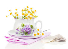 Cup with fresh camomile flower and tea bags royalty free stock image