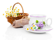 Cup with fresh camomile flower and tea bags stock photo