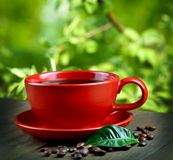 Cup of fresh coffee Royalty Free Stock Photo