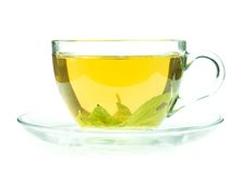 Cup of fresh green tea isollated on white Stock Images