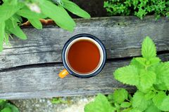 Cup of fresh herbal tea stock images