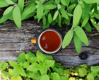 Cup of fresh herbal tea royalty free stock images