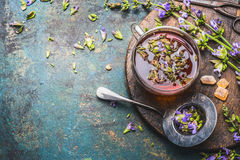 Cup of fresh herbal tea with healing herbs and flowers on aged rustic background, top view. Place for text Royalty Free Stock Images