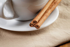 Cup of fresh hot cappuccino with cinnamon sticks Stock Photos