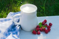 A cup of fresh milk and raspberry berries on a background of green grass. stock photography