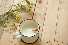 Cup of fresh milk Royalty Free Stock Photos