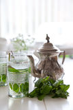 Cup of fresh mint tea Stock Photo