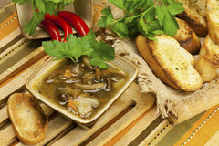 A cup of fresh mushroom soup Royalty Free Stock Photo