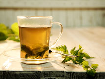 Cup of fresh nettle tea Stock Photography