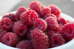Cup fresh ripe juicy natural raspberry gathered in the garden of Stock Photography