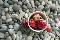 Cup with fresh strawberries on a background of gray sea pebbles Royalty Free Stock Photo