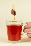 Cup of fresh strong tea in hand Royalty Free Stock Photography