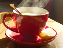 Cup of fresh tea stock photography