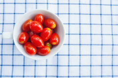 Cup of fresh tomatoes Stock Photography