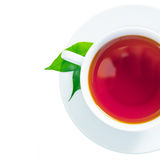 Cup of freshly brewed tea Royalty Free Stock Images